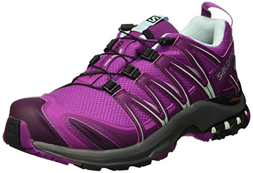 Salomon XA Pro 3D GTX W, Zapatillas de Trail Running para Mujer, Violeta (Hollyhock/Dark Purple/Eggshell Blue), 37 1/3 EU